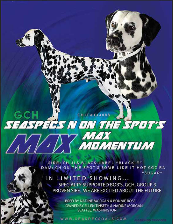 GCh SeaSpec's N' On The Spot's Max Momentum
